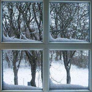 Winter proof window
