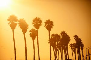 the best solar installation companies in california